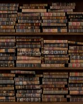 Horizontal Books mural wallpaper thumbnail