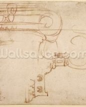 Study of an Ionic capital (red chalk on paper) (recto) mural wallpaper thumbnail