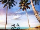 Beach Bicycle wall mural thumbnail