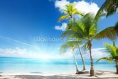 Caribbean Sea wall mural thumbnail