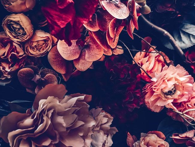 The Secrets of Dark Floral Wallpaper