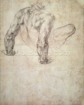 W.63r Study of a male nude, leaning back on his hands (pencil on paper) wall mural thumbnail