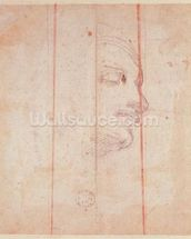 Study for the Head of the Libyan Sibyl (black chalk on paper) (verso) wallpaper mural thumbnail