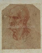 Head of a beardless old man, left profile (red chalk on paper) mural wallpaper thumbnail