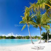 Bora Bora Beach mural wallpaper thumbnail