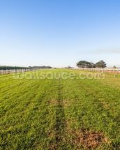 Horse Racing Training Track wall mural thumbnail