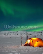 Northern Lights Experience wall mural thumbnail