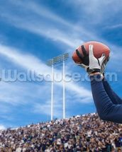 Touchdown Pass wall mural thumbnail