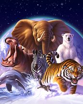Mammals mural wallpaper thumbnail