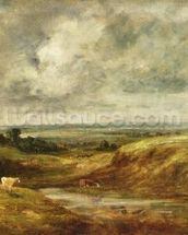 Hampstead Heath, c.1825-30 (oil on canvas) wallpaper mural thumbnail