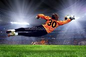 Football Goalkeeper wallpaper mural thumbnail