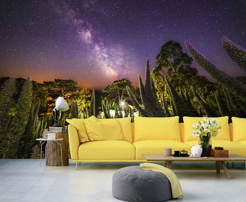 Landscape Wallpaper Ideas for any Home | Wallsauce UK
