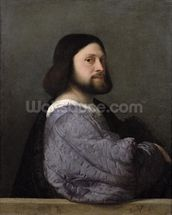 Portrait of a Man, c.1512 (oil on canvas) mural wallpaper thumbnail