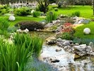 Asian Garden and Pond wall mural thumbnail