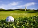 Golf Ball wall mural thumbnail