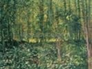 Trees and Undergrowth, 1887 (oil on canvas) wall mural thumbnail