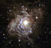 Cepheid Variable Star RS Puppis wallpaper mural thumbnail