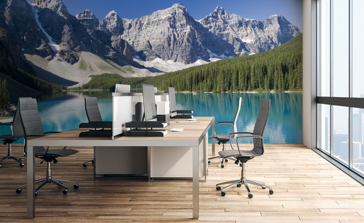lake view with surrounding trees and snowy mountains wallpaper in modern office space