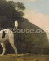 A Foxhound, c.1760 (oil on paper laid on board) wallpaper mural thumbnail