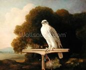 Greenland Falcon (Grey Falcon), 1780 (oil on panel) wall mural thumbnail