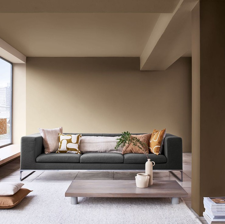 nutty brown painted walls in a trendy living room