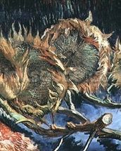Four Withered Sunflowers, 1887 (oil on canvas) wall mural thumbnail