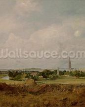 View of Salisbury (oil on canvas) wall mural thumbnail