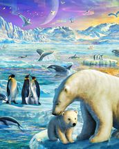 Arctic Sundown wall mural thumbnail