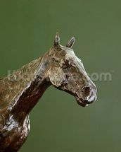Horses Head (bronze) (detail of 335585) wall mural thumbnail