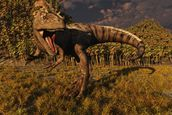 Allosaurus Hunts mural wallpaper thumbnail