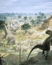 Ceratosaurus and Apatosaurus Herd wallpaper mural thumbnail