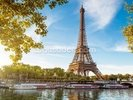 River Seine & Eiffel Tower wall mural thumbnail