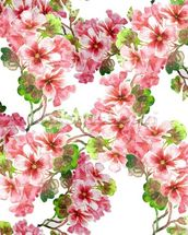 Geranium Pattern wallpaper mural thumbnail