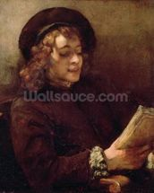 Titus Reading, c.1656-57 (oil on canvas) wallpaper mural thumbnail