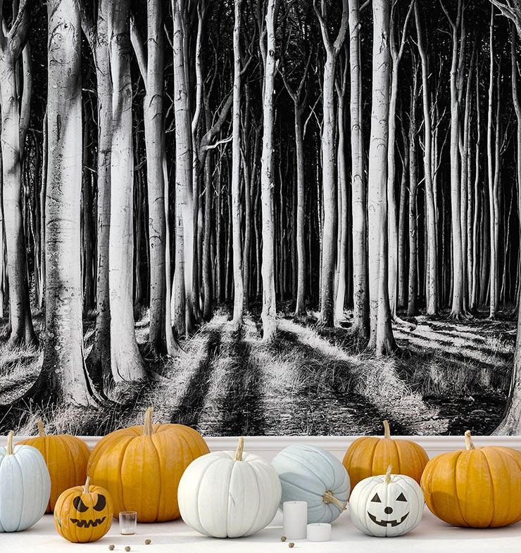 black and white scary forest wallpaper in room with orange and white pumpkins