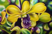 Close-Up Of Yellow Orchid Blossom (Oil Painting) wallpaper mural thumbnail