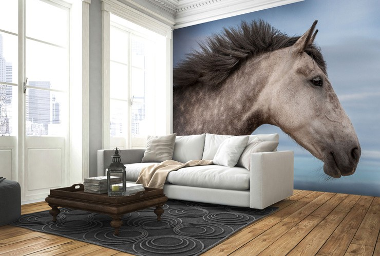 Horse_wall_mural_in_lounge