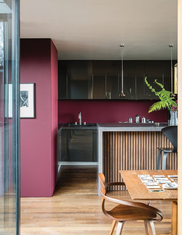 ox blood-red painted walls in trendy kitchen