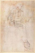 Study for the Ignudi above the Persian Sibyl in the Sistine Chapel, 1508-12 (charcoal on paper) (verso) wallpaper mural thumbnail