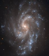 Hubble's View of NGC 5584 mural wallpaper thumbnail