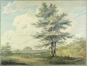 Landscape with Trees and Figures, c.1796 (w/c over graphite on paper) wall mural thumbnail