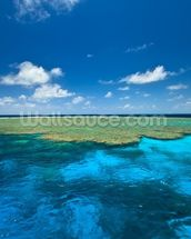 Clam Gardens, Great Barrier Reef wall mural thumbnail