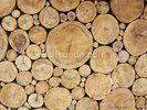 Stacked Logs wall mural thumbnail