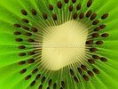 Kiwi Fruit wall mural thumbnail