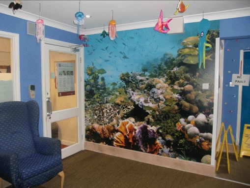 Wall Murals for Care Homes and Hospitals