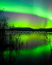 Northern Lights Mirror wall mural thumbnail