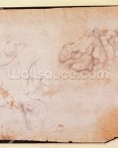 Study of Muscles (pencil on paper) (verso) (for recto see 191769) wall mural thumbnail
