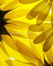 Yellow Flowers wallpaper mural thumbnail