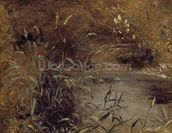 Rushes by a Pool, c.1821 (oil on paper on board) mural wallpaper thumbnail