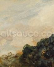Cloud Study with Trees, 1821 (oil on paper laid down on board) wallpaper mural thumbnail